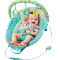Mastela Baby to Toddler Bouncer –  Green