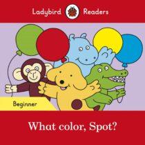 What color, Spot? Beginner Level